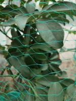 Ochranná sieť proti vtákom TORO 4x10m