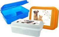 Plastový desiatový box s prepážkou MIX maznáčikovia 18x13x7cm