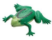 Kvákajúca žaba so senzorom, 34 x 28 x 6 cm