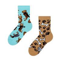 Detské veselé ponožky DEDOLES jazvečík 27-30