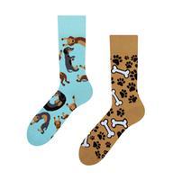 Veselé ponožky DEDOLES jazvečík 35-38