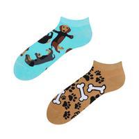 Členkové veselé ponožky DEDOLES jazvečík 35-38