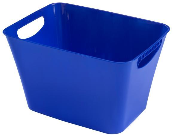 Plastový košík HEIDRUN 41x29x25cm